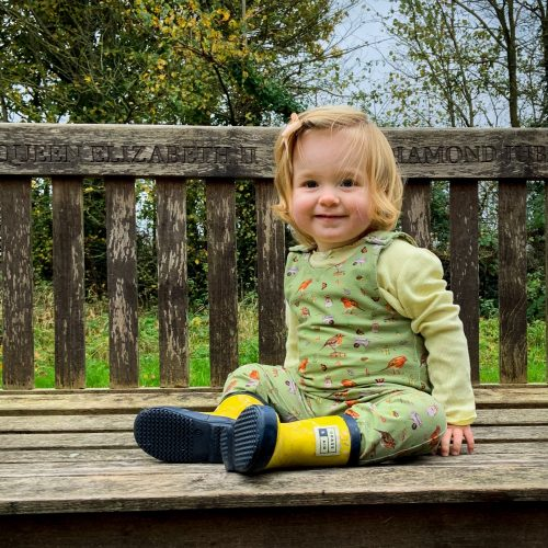 Olive Robin Dungarees